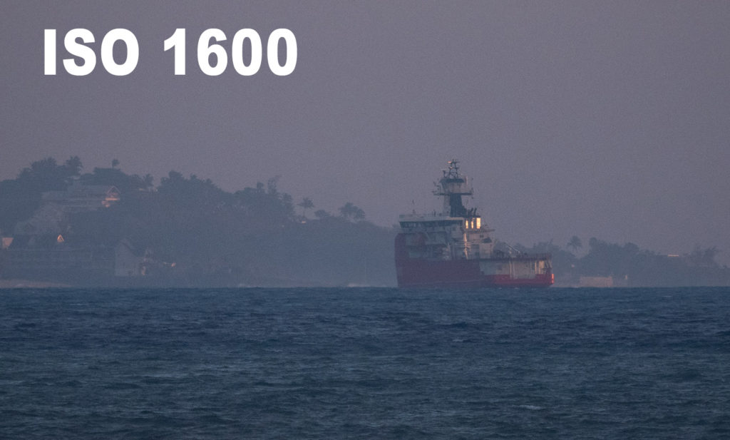 la sensibilité ISO en photographie à ISO 1600